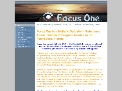 Focus One Inc Saint Petersburg